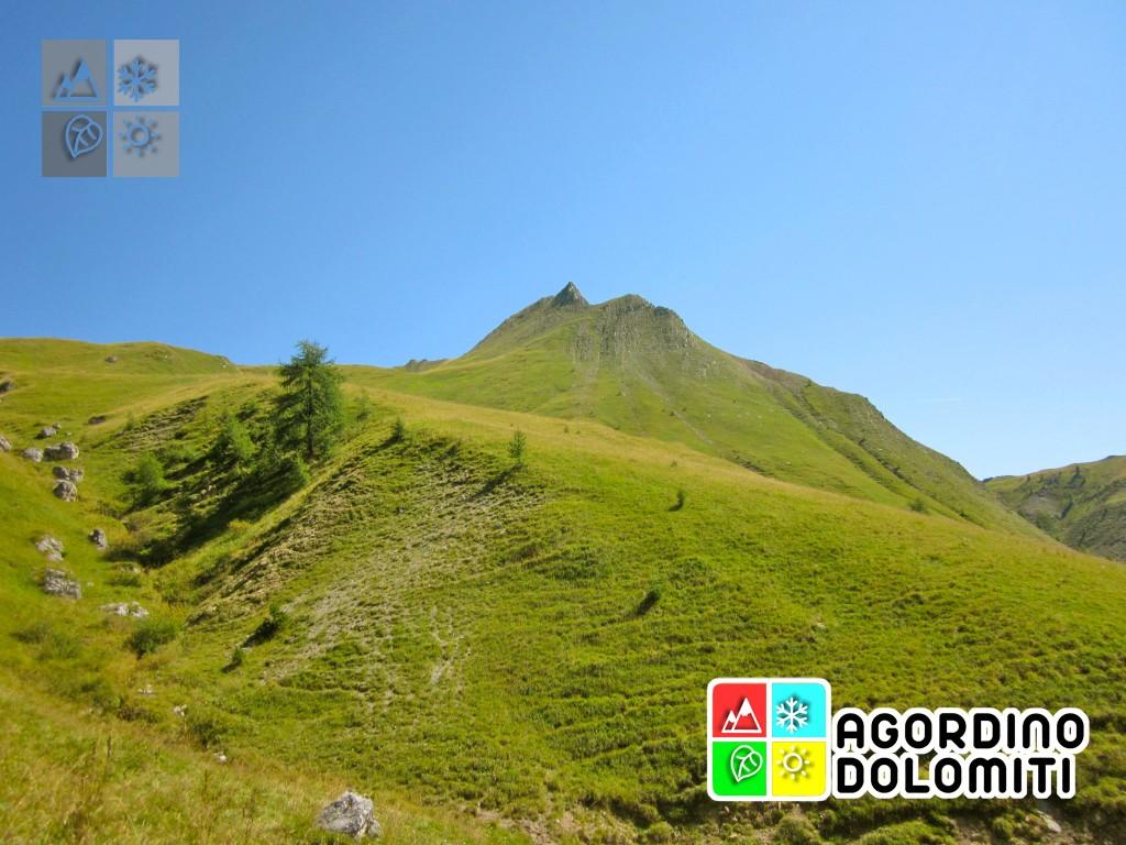 Valfredda Dolomiti