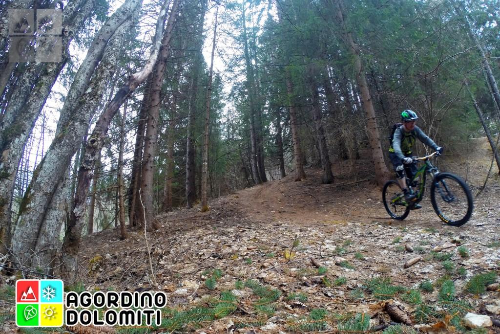 Mountain Bike Falcade