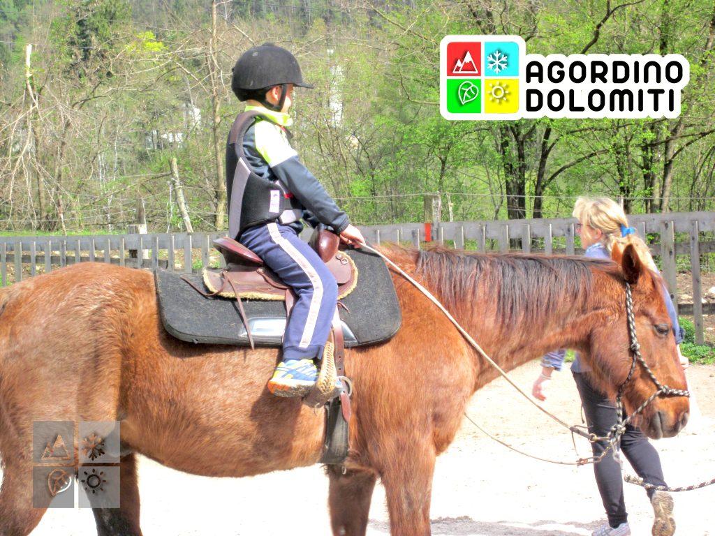 horseback riding dolomites italy
