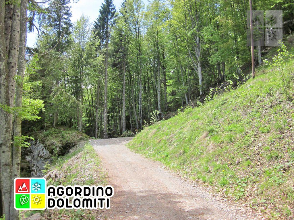 Voltago Agordino | Dolomiti