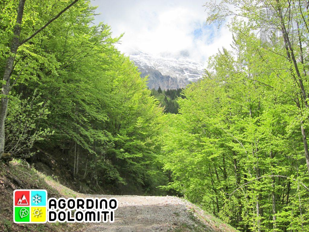 Agner | Dolomiti UNESCO