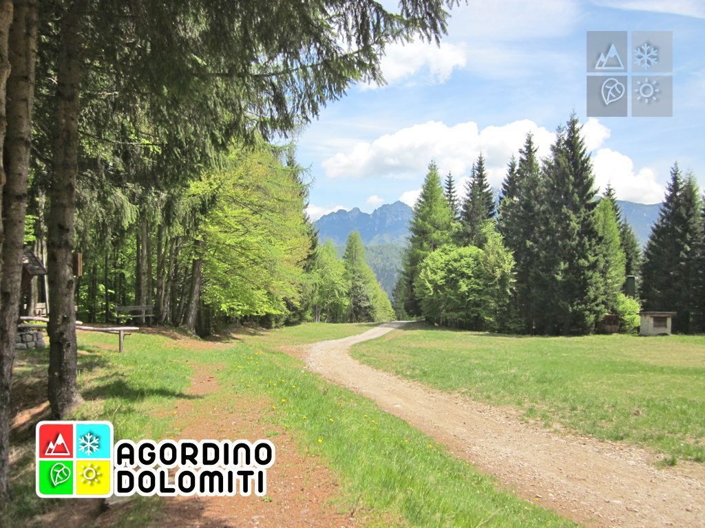 Frassenè Agordino | Dolomiti