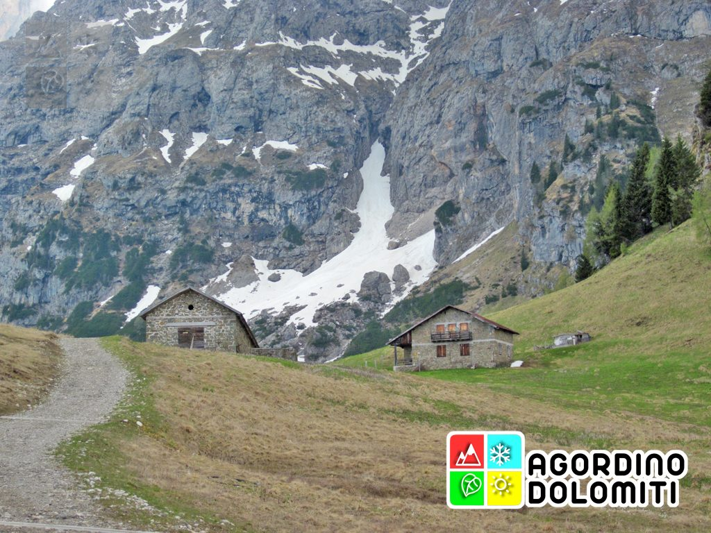 Malga Losch | Voltsgo Agordino | Dolomiti