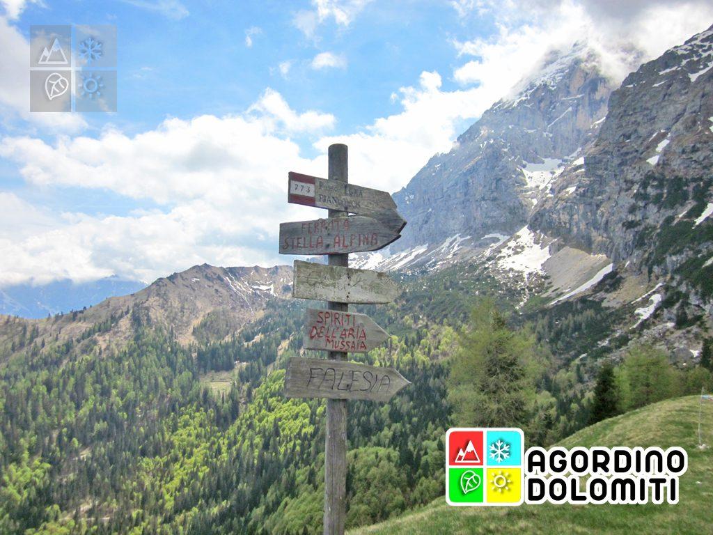 Col di Luna | Agordino Dolomiti