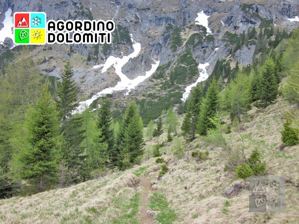 Col di Luna | Agner Dolomiti