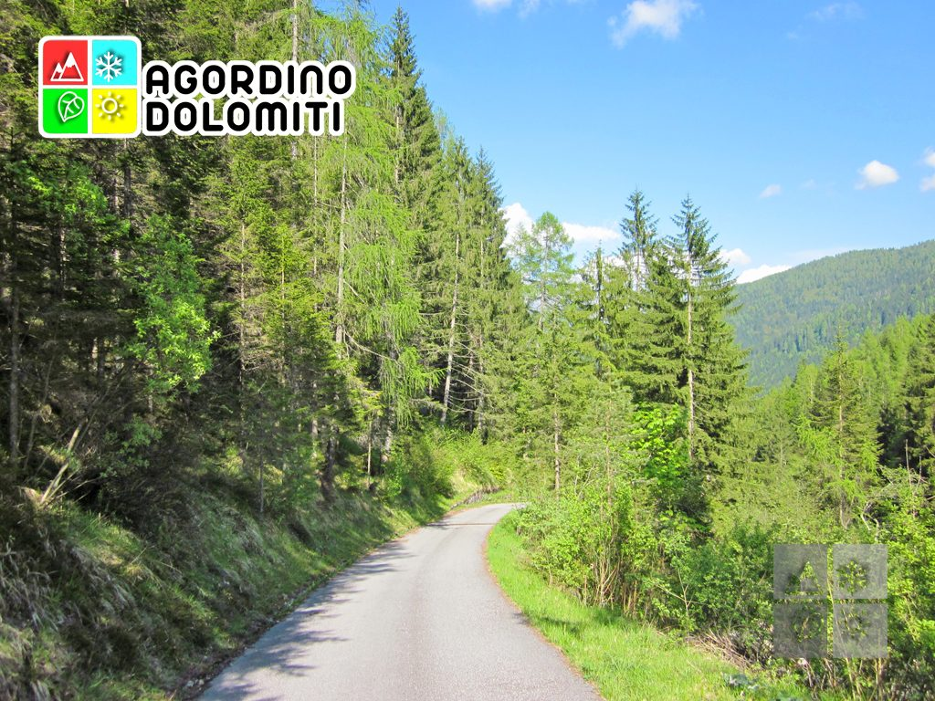 Frassenè | Voltago Agordino | Dolomiti