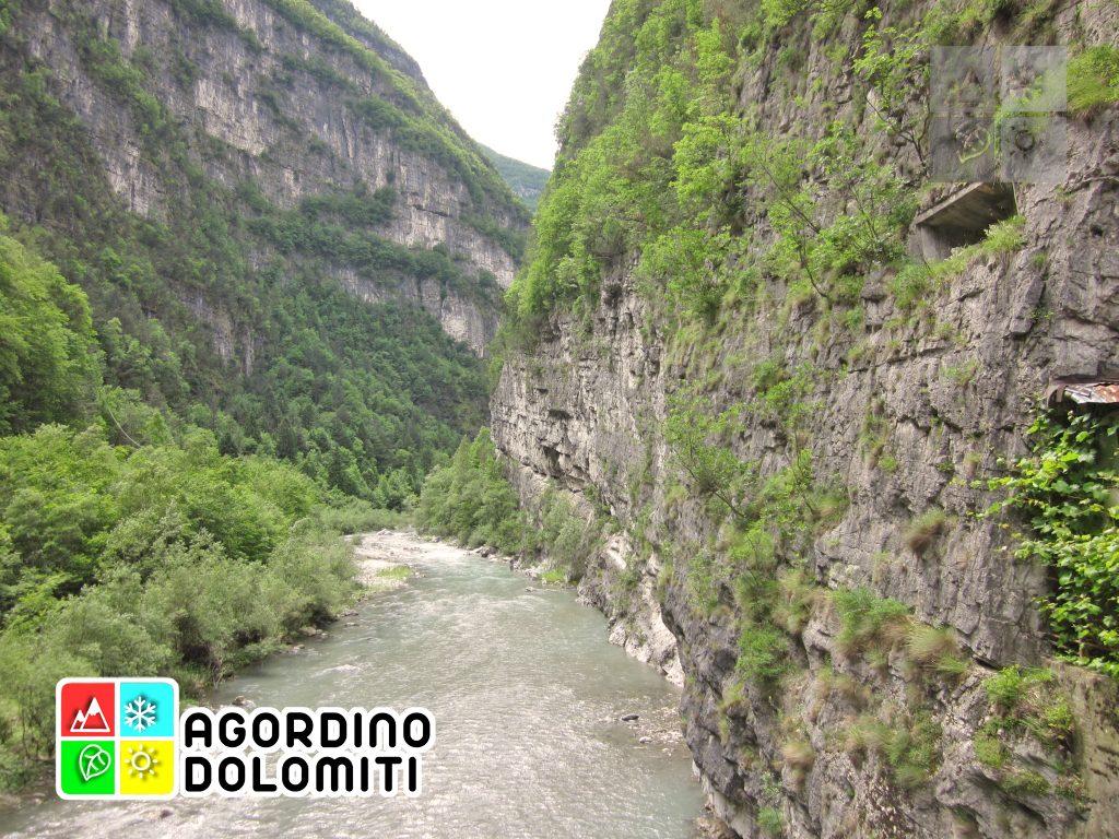 Tagliata di San Martino Agordo Dolomiti