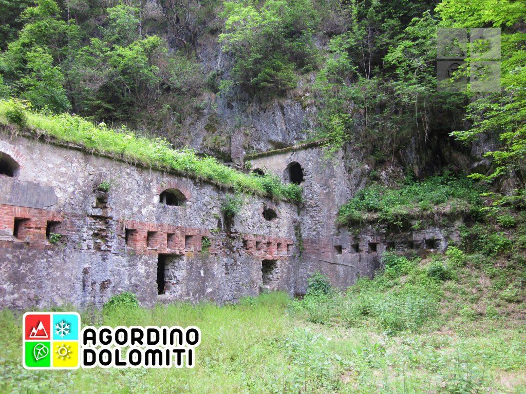 Tagliata di San Martino Dolomiti