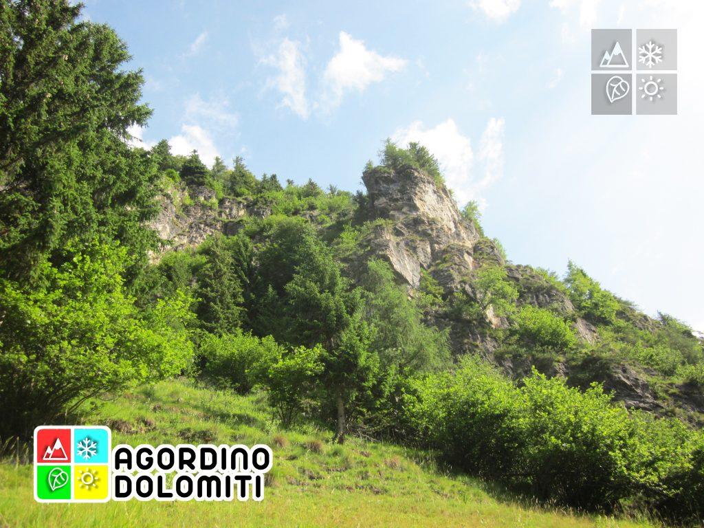 Col de Tone - San Tomaso Agordino