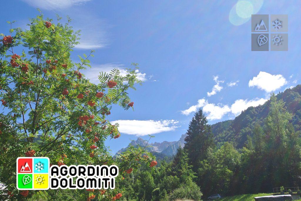 sentiero_geologico_agordo_agordino_dolomiti (1)