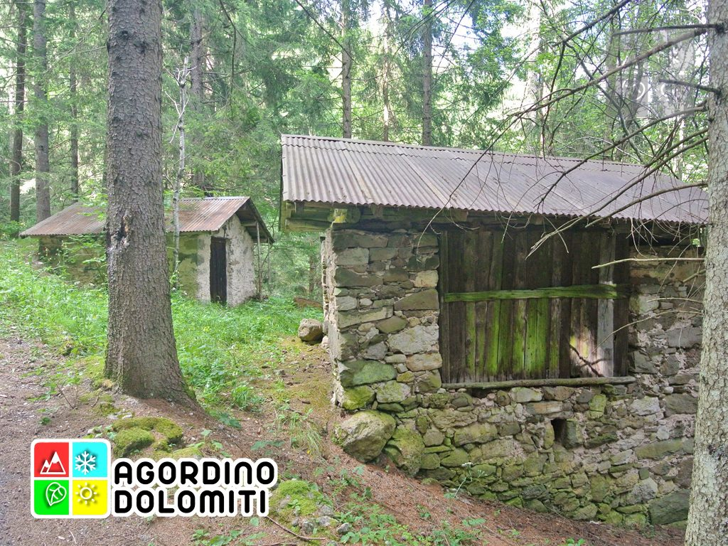 sentiero_geologico_agordo_agordino_dolomiti (19)