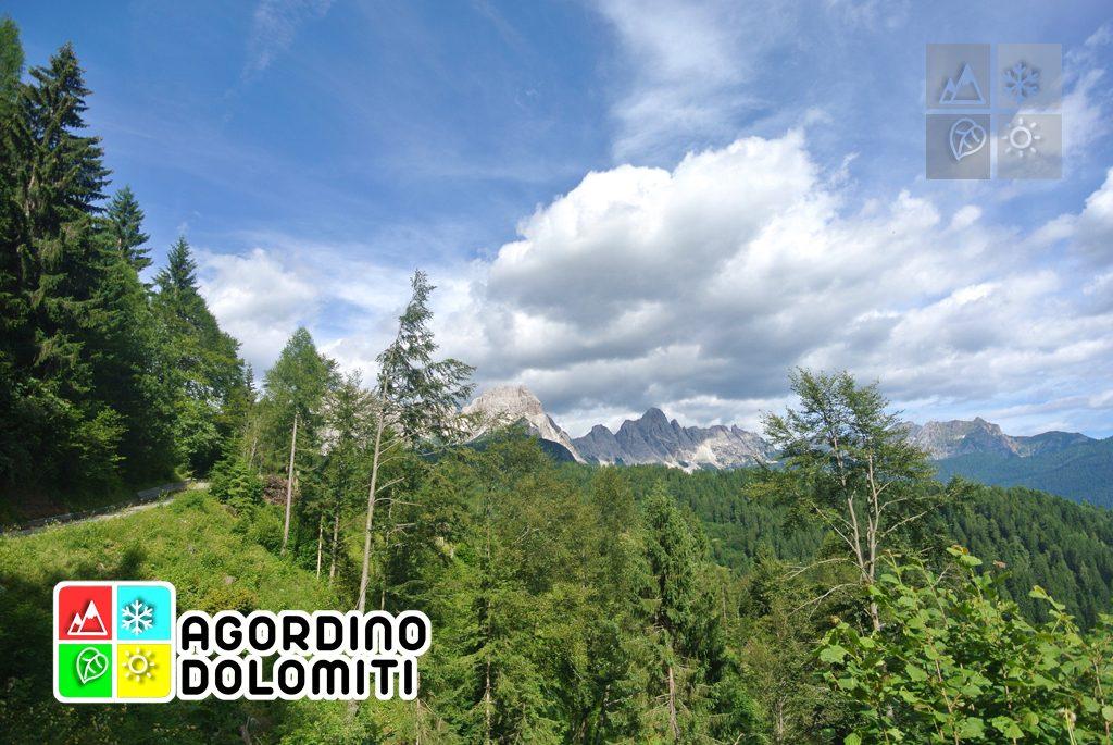 sentiero_geologico_agordo_agordino_dolomiti (21)