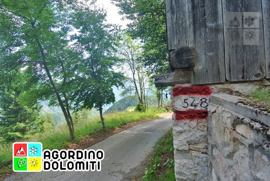 sentiero_geologico_agordo_agordino_dolomiti (23)