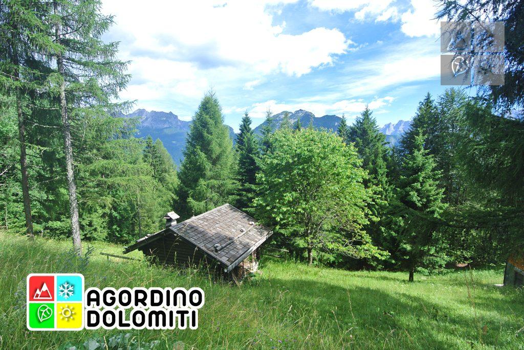 sentiero_geologico_agordo_agordino_dolomiti (24)