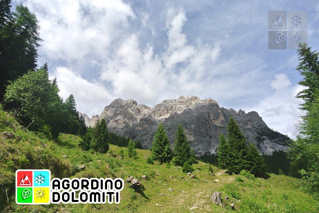sentiero_geologico_agordo_agordino_dolomiti (31)