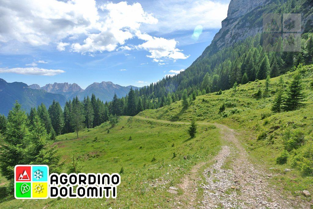 sentiero_geologico_agordo_agordino_dolomiti (34)