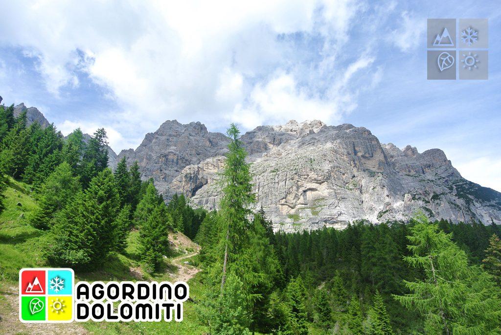sentiero_geologico_agordo_agordino_dolomiti (39)