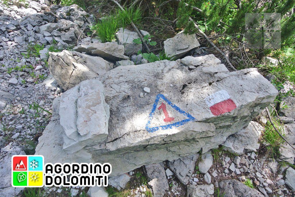 sentiero_geologico_agordo_agordino_dolomiti (60)