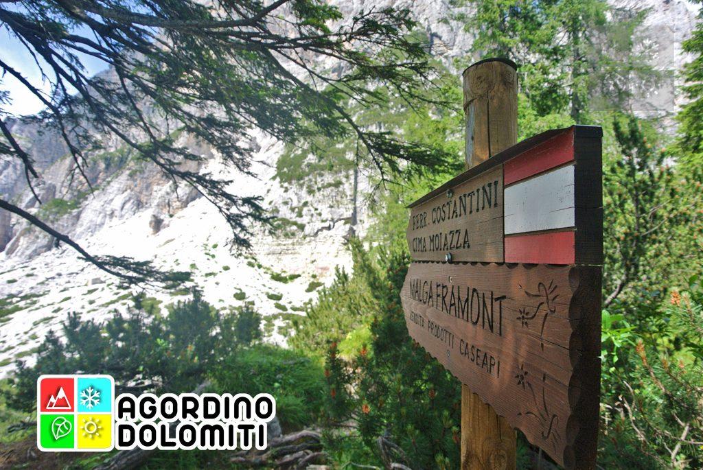 sentiero_geologico_agordo_agordino_dolomiti (62)