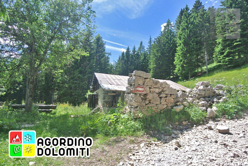 sentiero_geologico_agordo_agordino_dolomiti (67)