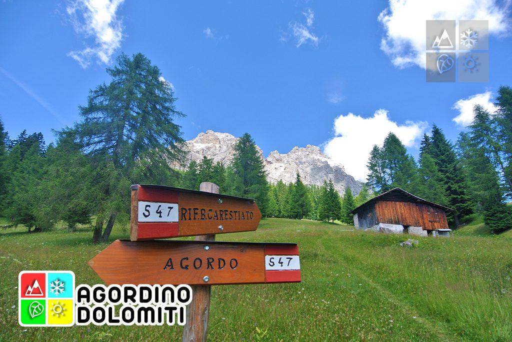 sentiero_geologico_agordo_agordino_dolomiti (69)