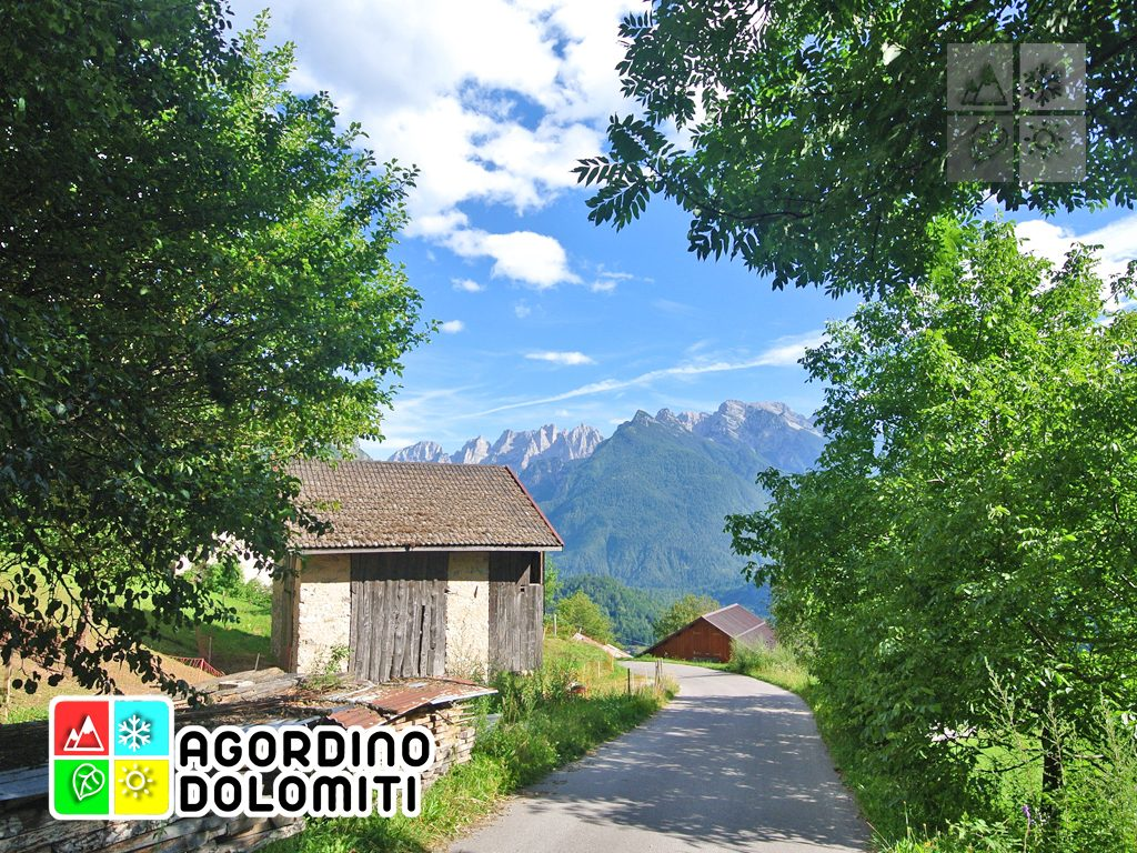 sentiero_geologico_agordo_agordino_dolomiti (7)