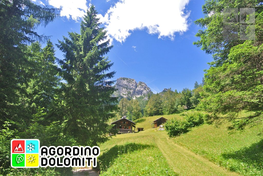 sentiero_geologico_agordo_agordino_dolomiti (73)