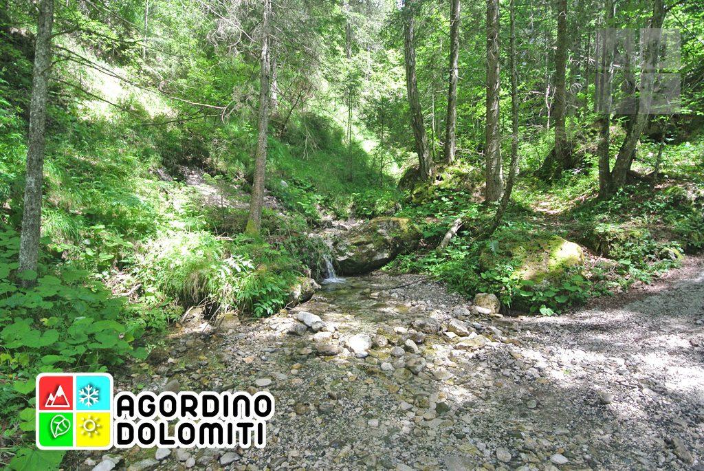 sentiero_geologico_agordo_agordino_dolomiti (75)