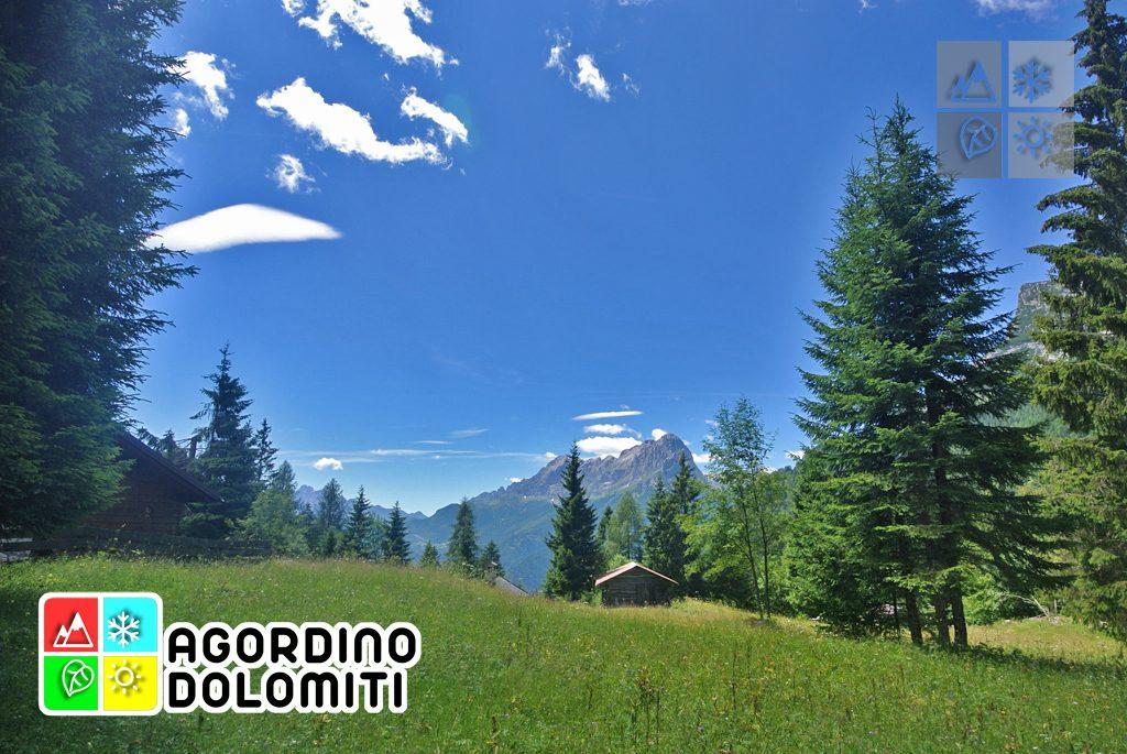 sentiero_geologico_agordo_agordino_dolomiti (76)