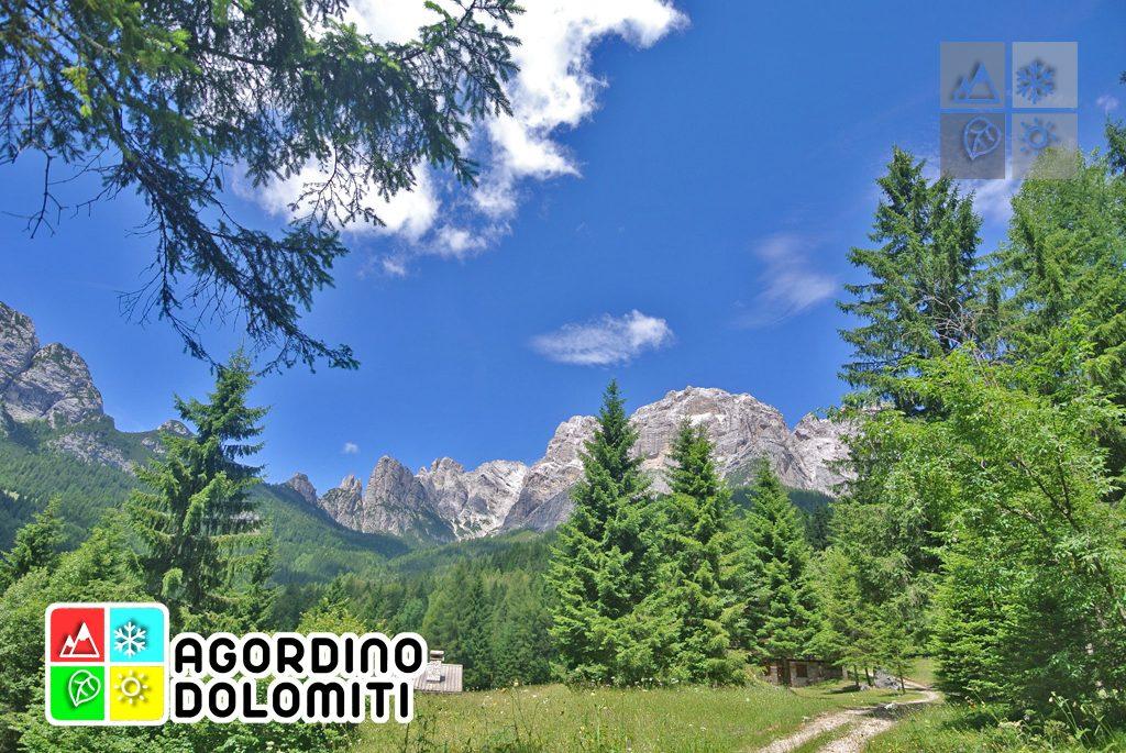 sentiero_geologico_agordo_agordino_dolomiti (77)
