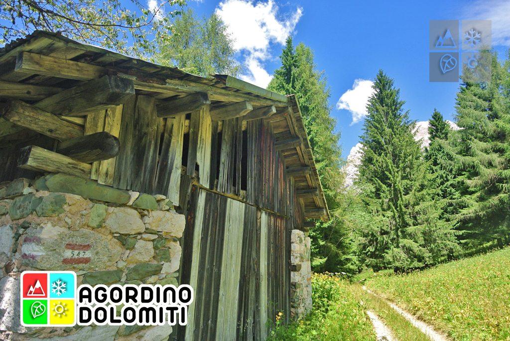 sentiero_geologico_agordo_agordino_dolomiti (78)