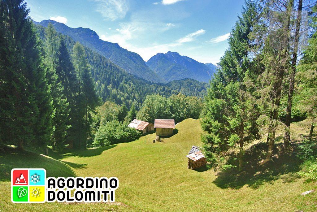sentiero_geologico_agordo_agordino_dolomiti (82)