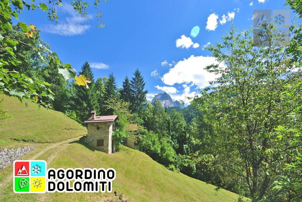 sentiero_geologico_agordo_agordino_dolomiti (84)