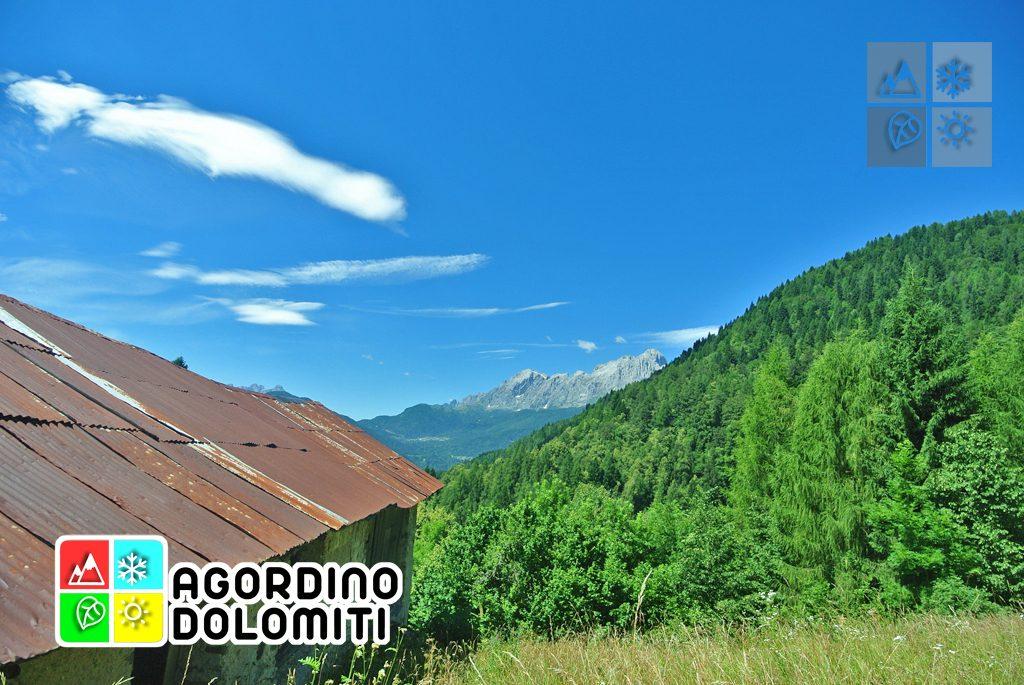 sentiero_geologico_agordo_agordino_dolomiti (86)