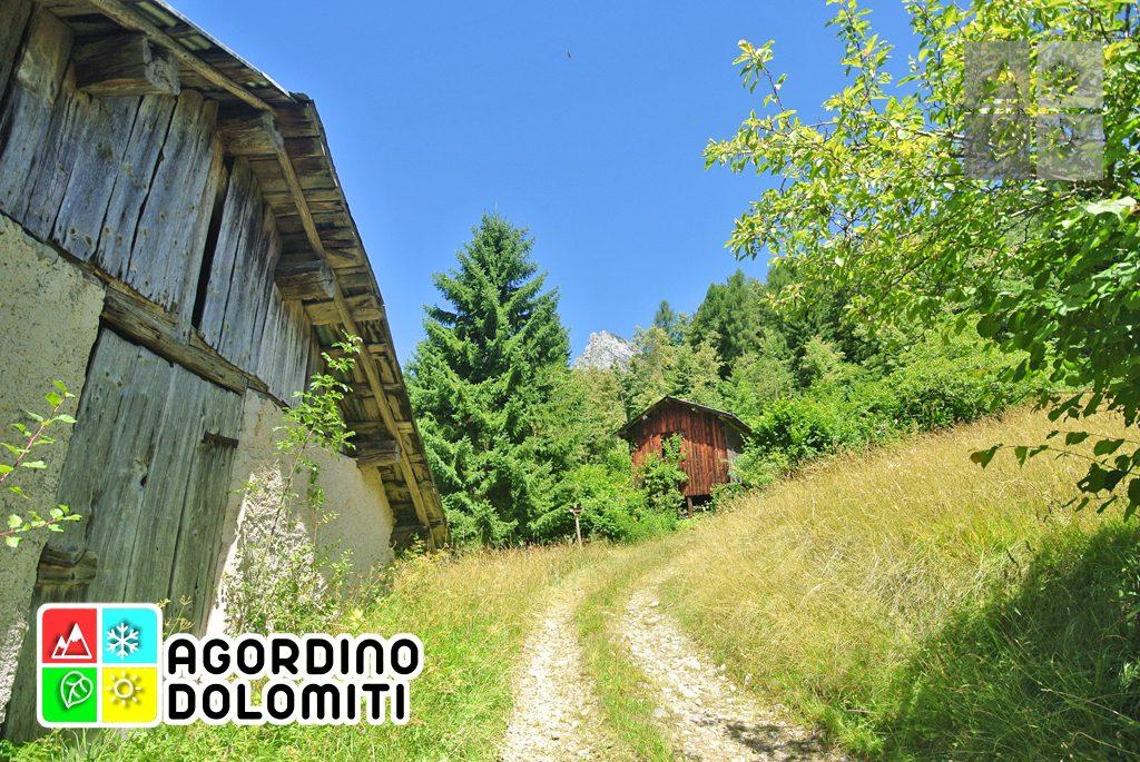 sentiero_geologico_agordo_agordino_dolomiti (87)