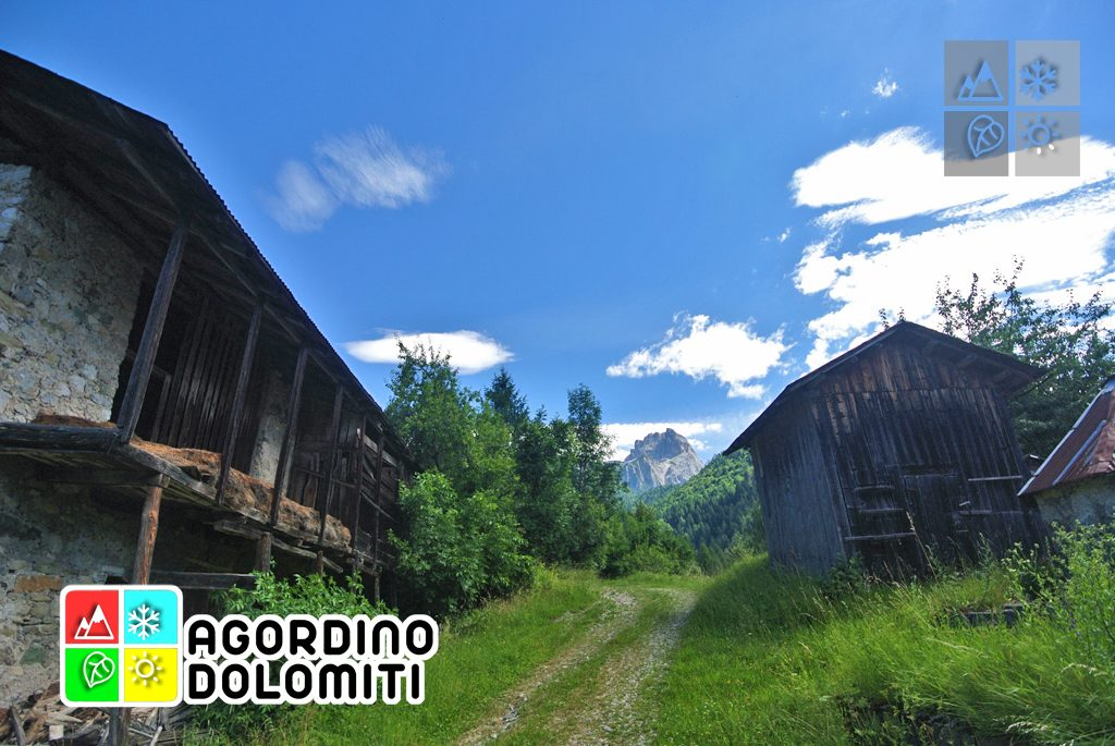 sentiero_geologico_agordo_agordino_dolomiti (88)