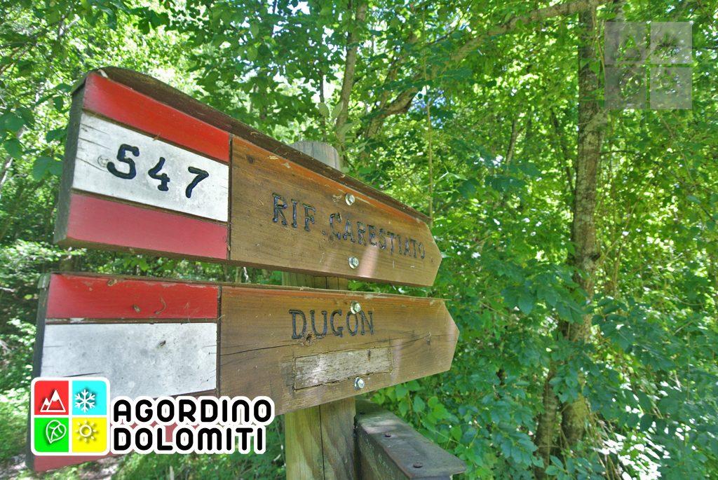 sentiero_geologico_agordo_agordino_dolomiti (92)