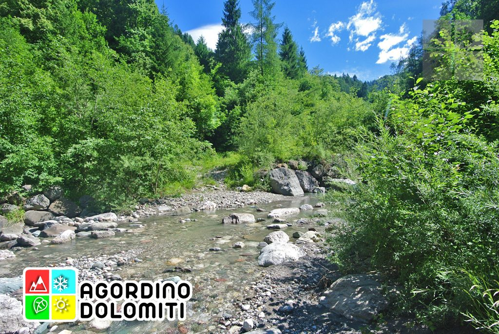 sentiero_geologico_agordo_agordino_dolomiti (96)