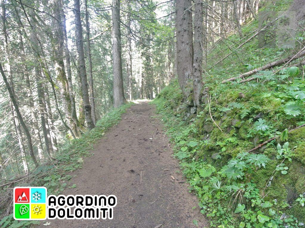 Cima_Sasso_Bianco_Escursioni_Nelle_Dolomiti (101)