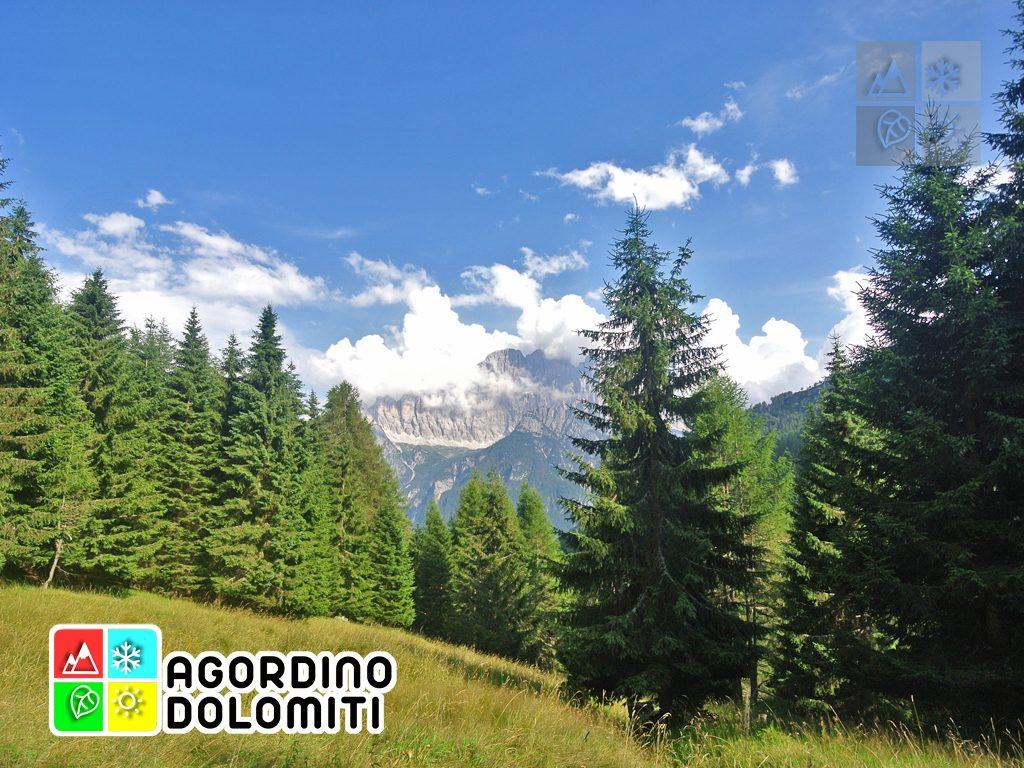 Cima_Sasso_Bianco_Escursioni_Nelle_Dolomiti (103)