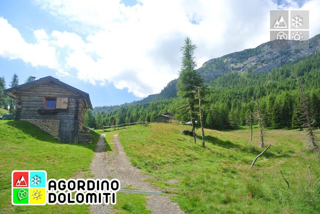 Cima_Sasso_Bianco_Escursioni_Nelle_Dolomiti (11)