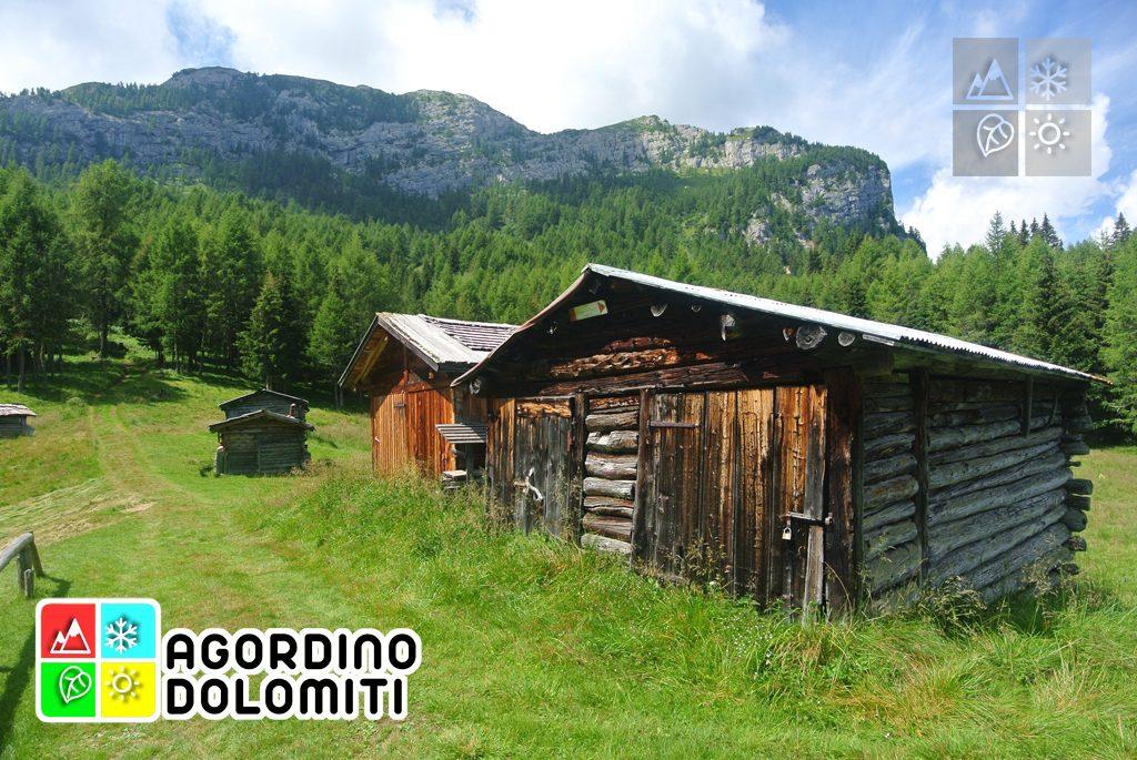 Cima_Sasso_Bianco_Escursioni_Nelle_Dolomiti (12)