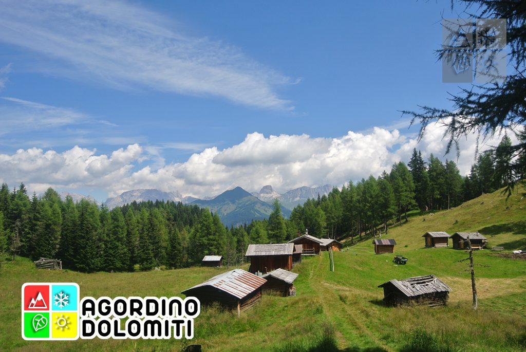 Cima_Sasso_Bianco_Escursioni_Nelle_Dolomiti (13)