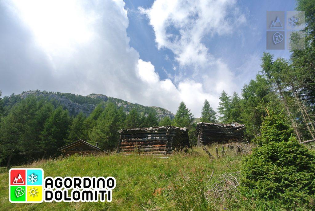 Cima_Sasso_Bianco_Escursioni_Nelle_Dolomiti (14)