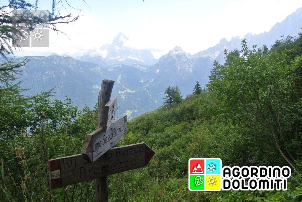 Cima_Sasso_Bianco_Escursioni_Nelle_Dolomiti (16)