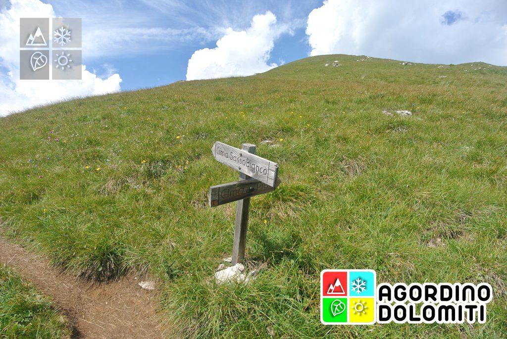 Cima_Sasso_Bianco_Escursioni_Nelle_Dolomiti (30)