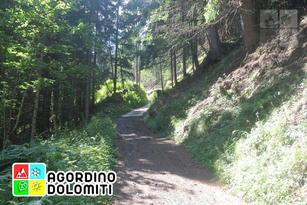 Cima_Sasso_Bianco_Escursioni_Nelle_Dolomiti (7)