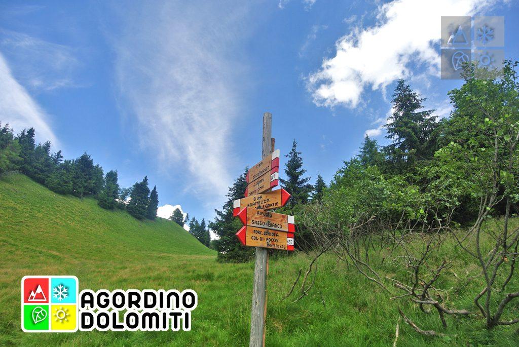 Cima_Sasso_Bianco_Escursioni_Nelle_Dolomiti (70)