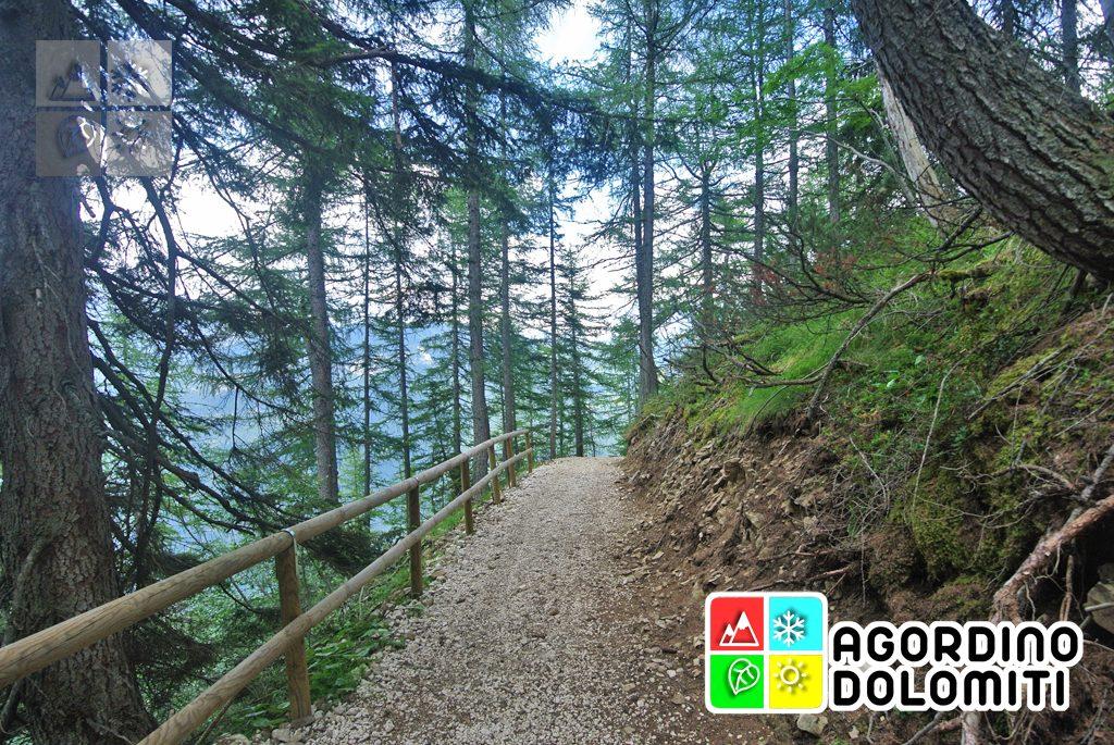 Cima_Sasso_Bianco_Escursioni_Nelle_Dolomiti (76)