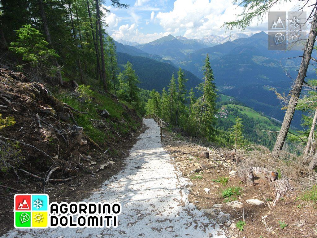 Cima_Sasso_Bianco_Escursioni_Nelle_Dolomiti (82)